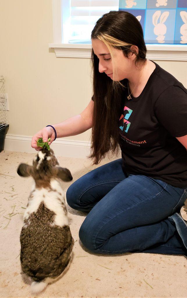 Pet trainer